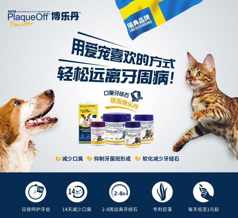 """专注宠物口腔健康 博乐丹连续5年提倡""""快乐洁牙"""""""